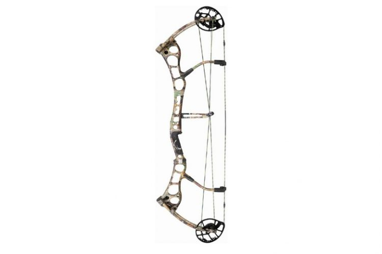 Bear Anarchy HC Compound Bow Review - The Modern Archer